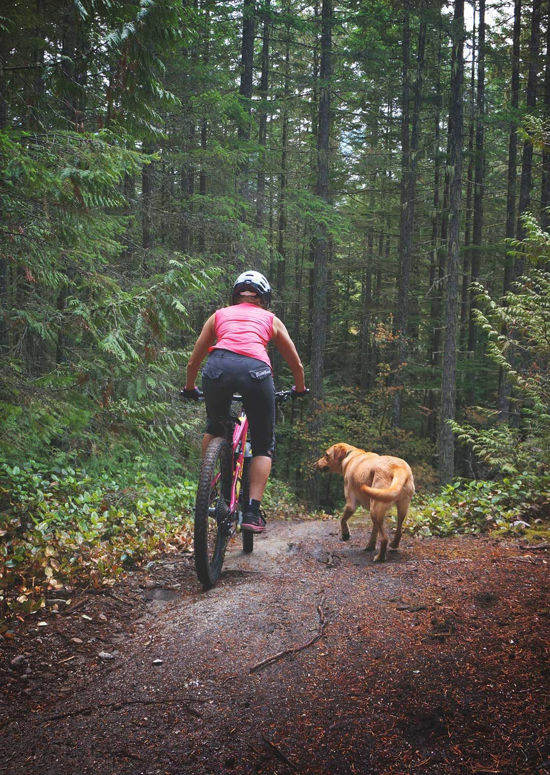 Zesty-Life-Mountain-Bike-Meditation-Mindfulness-Adventures-Rachelle-Kula-squamish-moving-meditation